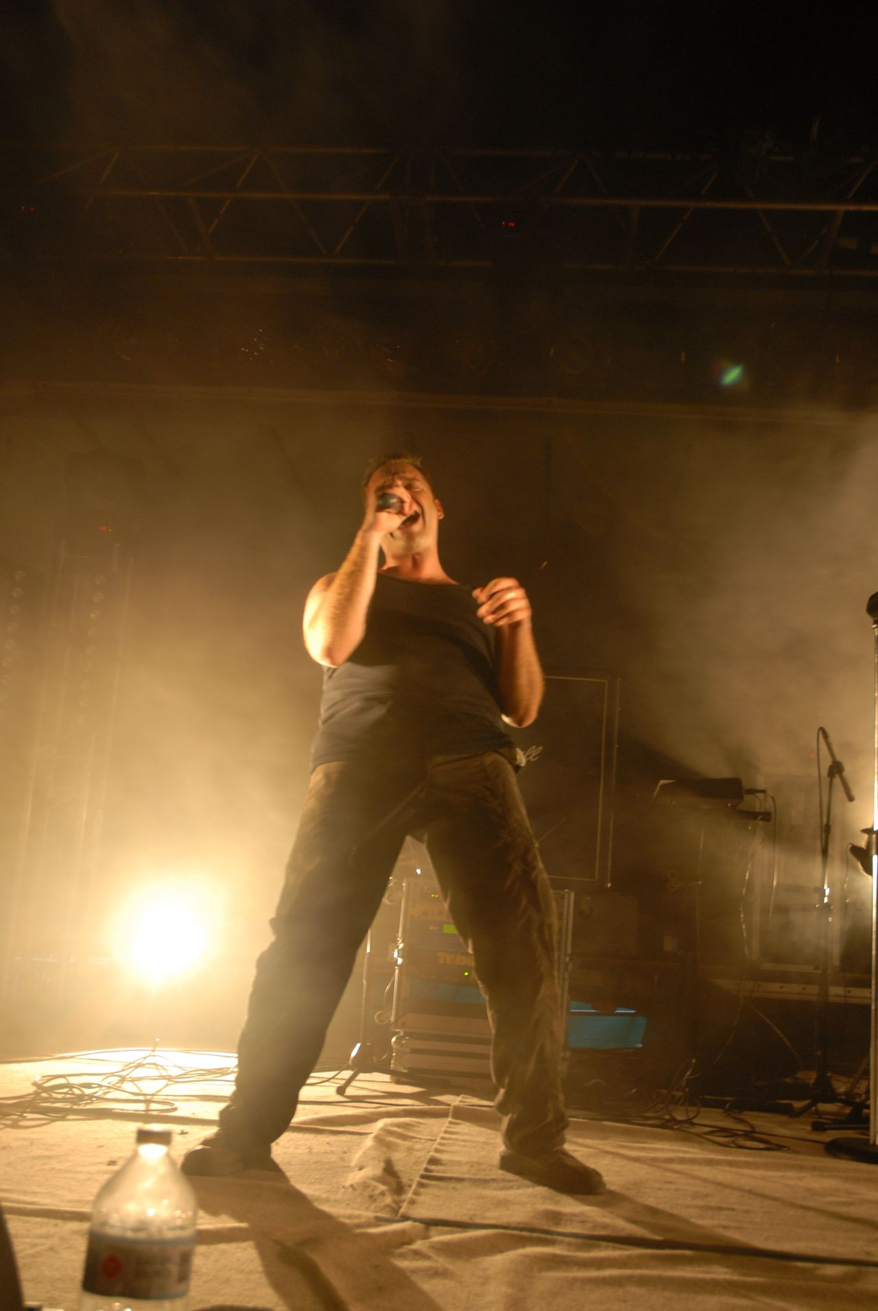 2008 (361)