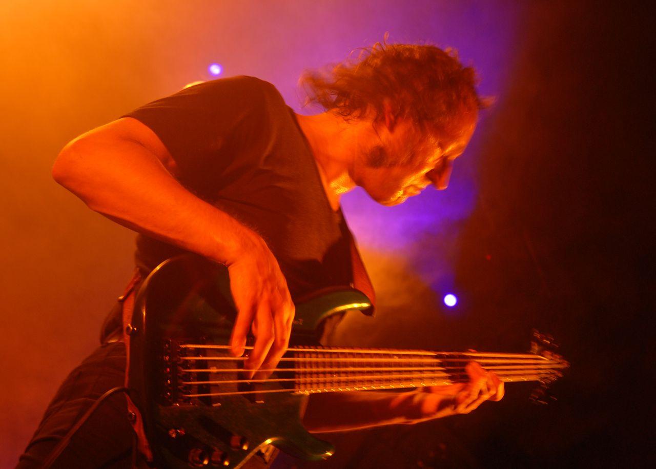 2008 (395)