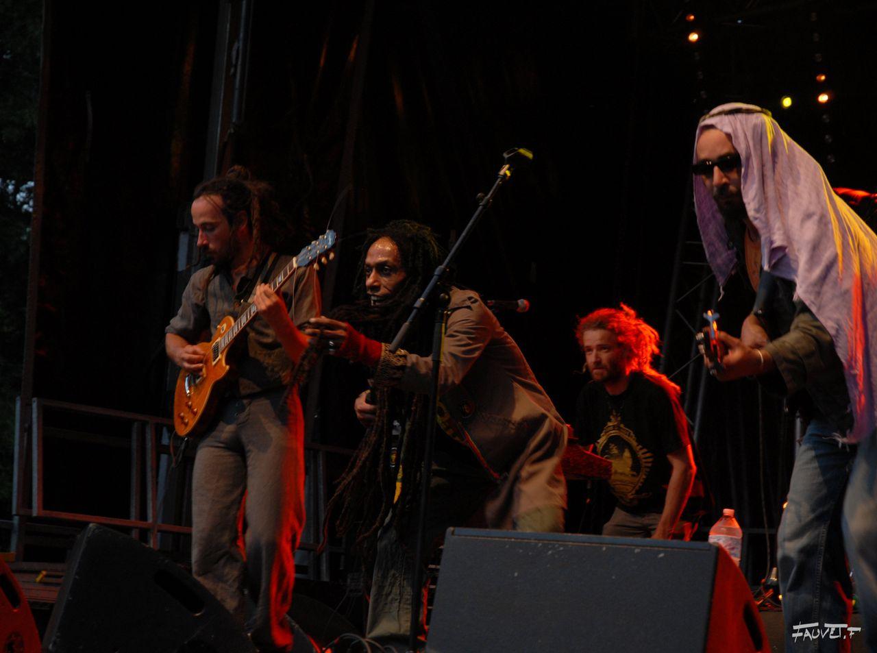 2009 (113)