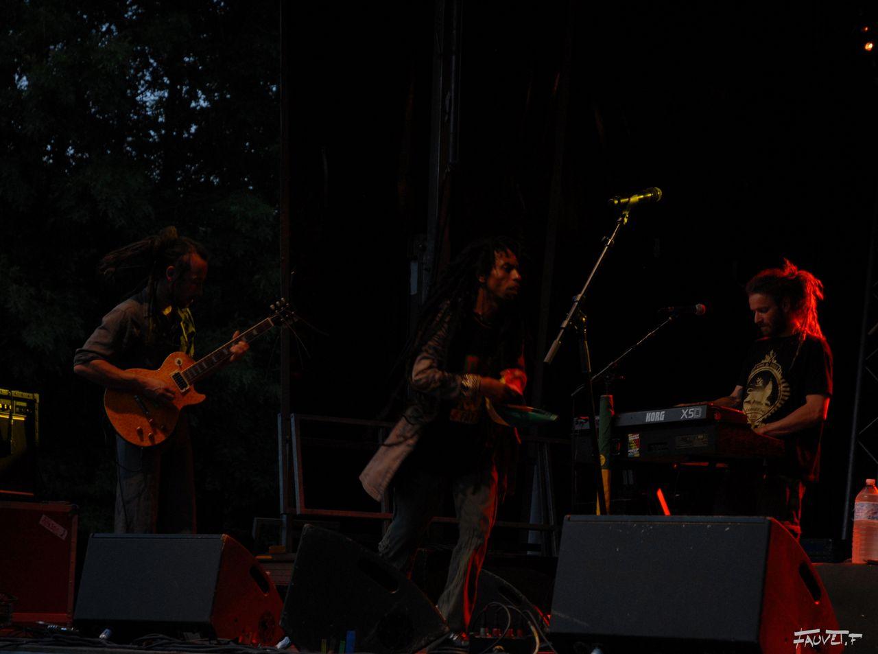 2009 (117)
