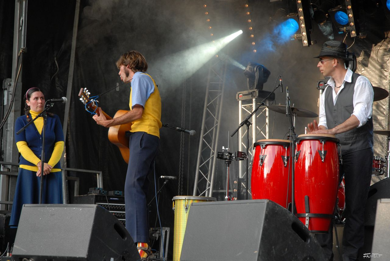 2009 (19)