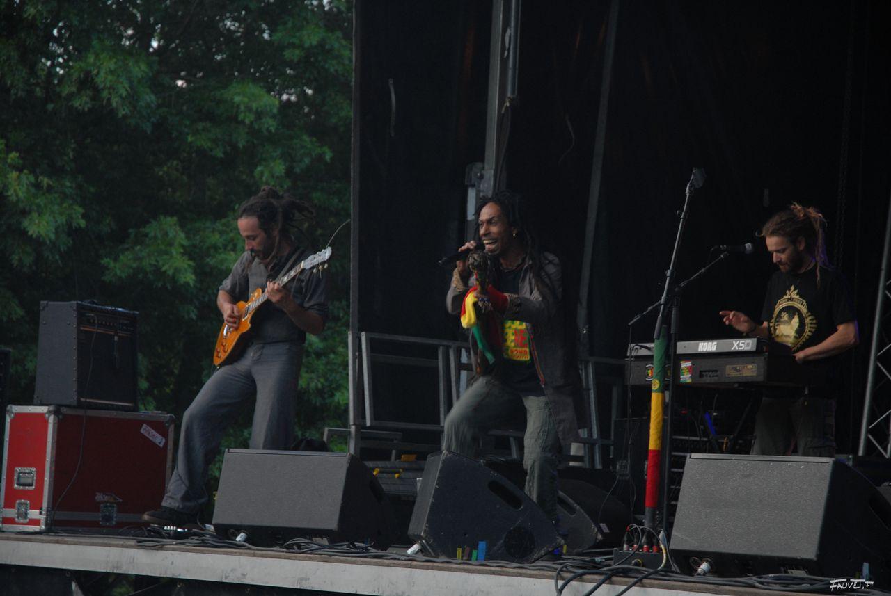 2009 (59)