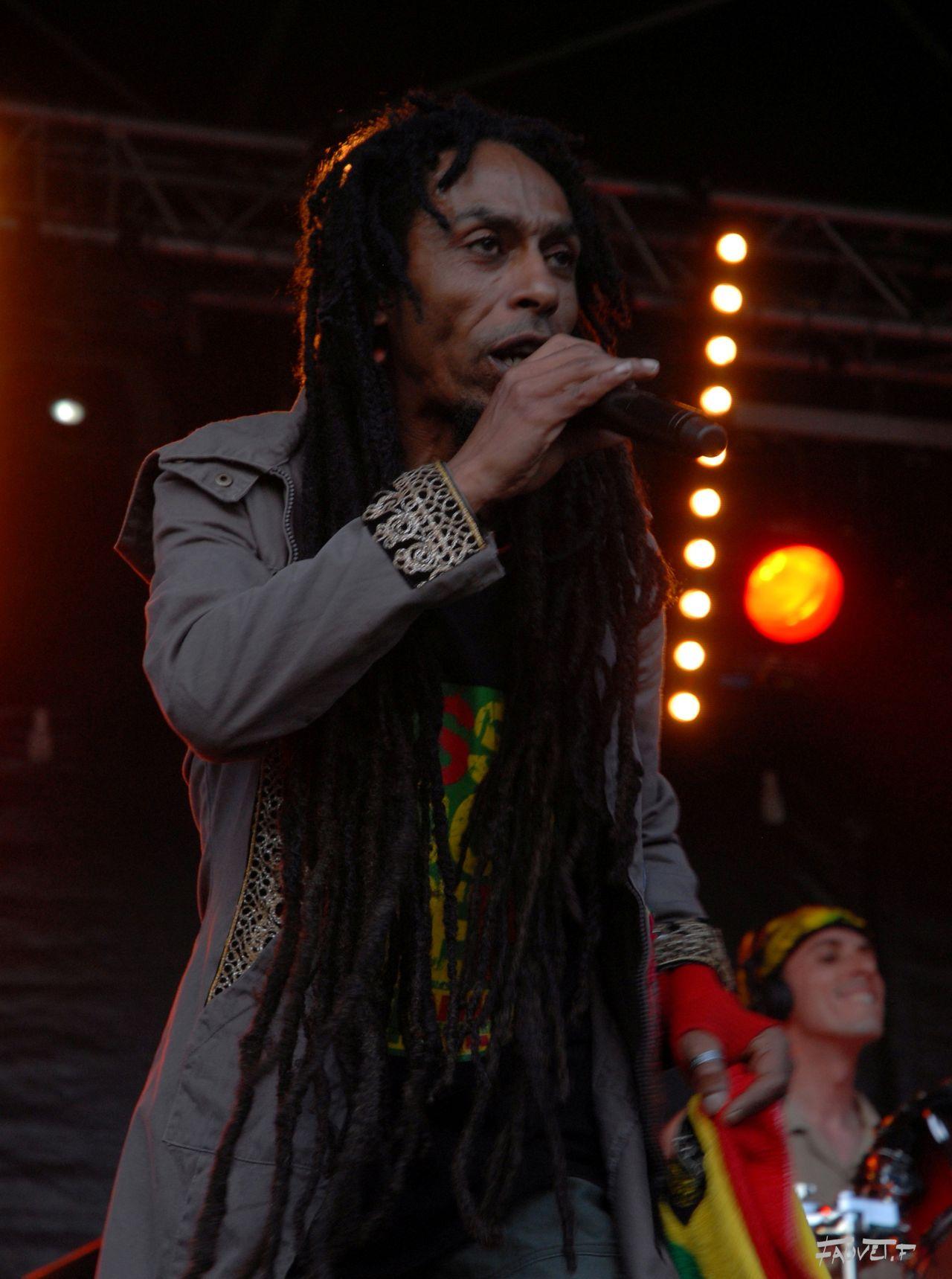 2009 (88)