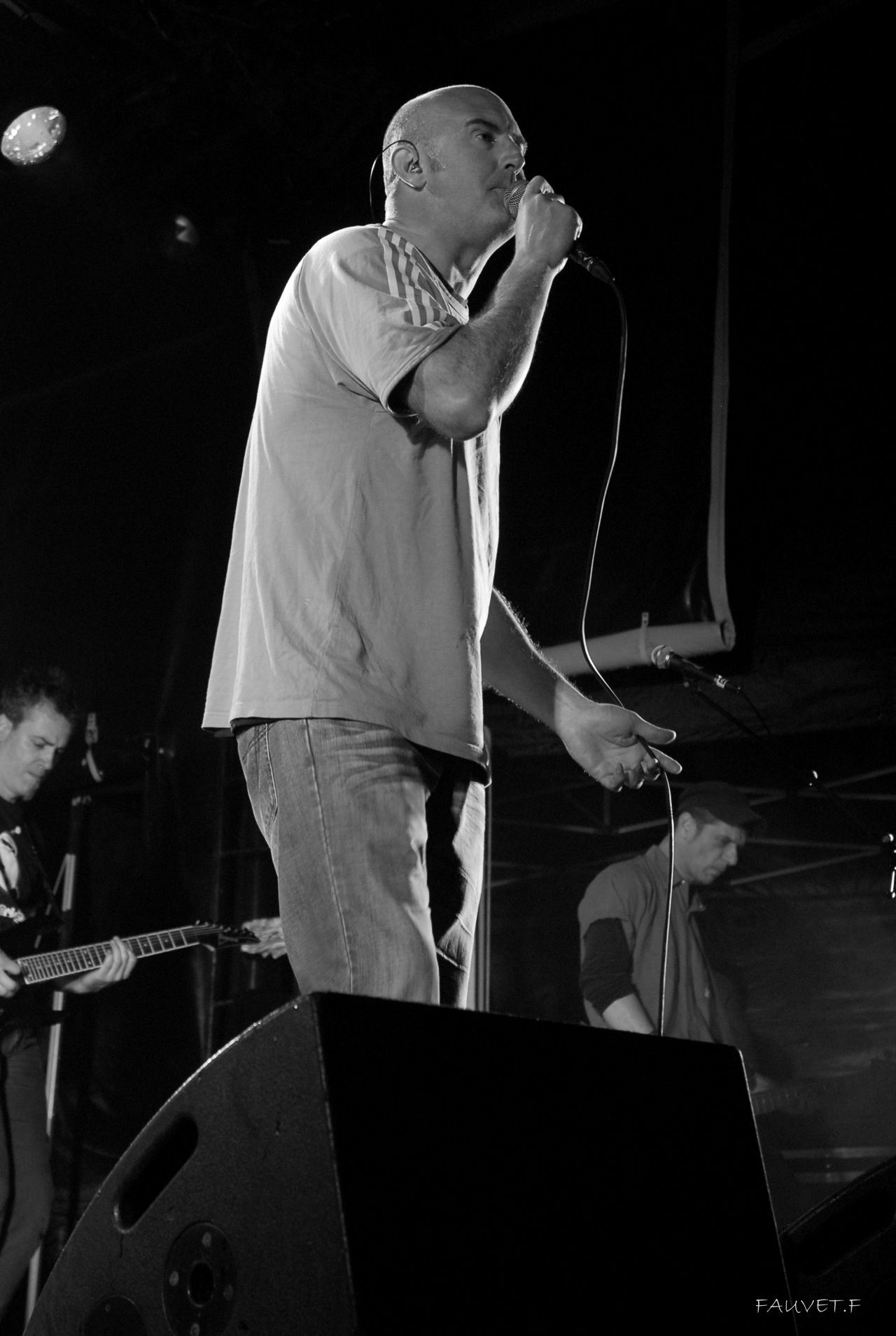 2010 (77)